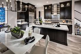 Dark Cabinet Kitchen With White Super Thassos Glass Countertop And Light  Wood Floors