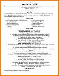 11 General Resume Summary Resume Type