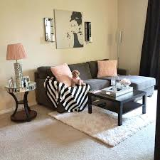 decorative ideas for living room apartments. College Living Room Ideas Best Rooms On Dorm  Cool Apartment . Decorative For Apartments