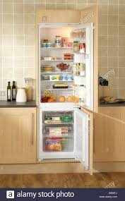 Over The Fridge Cabinet Kitchen Room Refrigerator Wood Panels Undercounter Freezer