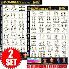 Dumbbell Exercise Workout Banner Poster Complete Set Big 28 X 20
