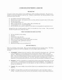 Good Resume Example Beautiful Good Resume Summary Examples