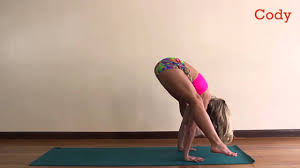 ashtanga yoga primary series on codyapp
