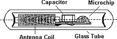 Αποτέλεσμα εικόνας για microchip in humans