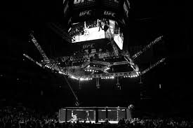 UFC Fight Night on ESPN 5 FREE LIVE STREAM: How to watch ...
