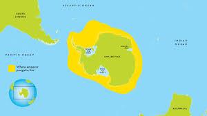 emperor penguin habitat map. Contemporary Map Picture Of Emperor Penguin Range Map Inside Habitat National Geographic Kids