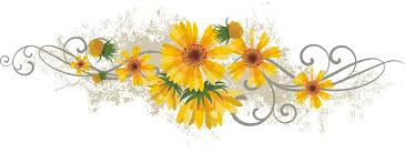 Image result for divider flowers