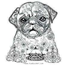 Hard Coloring Pages Of Animals Difficult Coloring Pages On Hard Of