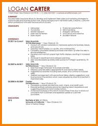 11 Sales Assistant Resume Activo Holidays