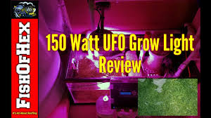 Ufo Grow Light Refugium Ufo Refugium Grow Light Four Month Review Could It Be The Next Best Thing