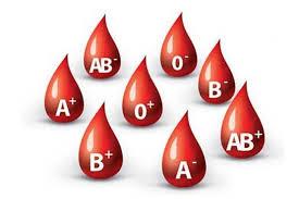 Image result for نیاز به خون همیشگی است