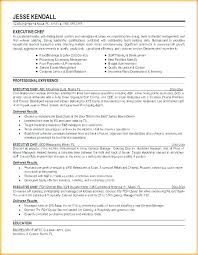 Corporate Executive Chef Sample Resume Cool Executive Sous Chef Resume Executive Sous Chef Resume Example