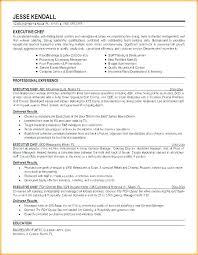 Executive Chef Resume Interesting Executive Sous Chef Resume Executive Sous Chef Resume Example