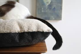 learn how to sew your own kitty cat bed