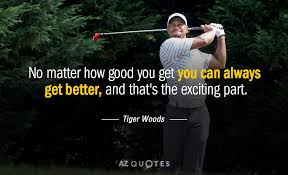TOP 40 QUOTES BY TIGER WOODS Of 40 AZ Quotes Adorable Woods Quotes