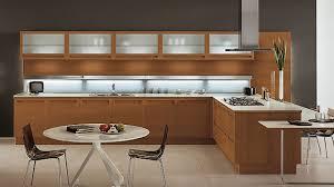 Plain Modern Wood Kitchen Cabinets W Inside Beautiful Ideas