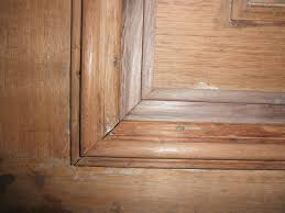 antique door restoration furniture restoration of walnut brownstone entry doors during olek lejbzon co clients love our work see reviews or testimonials