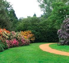 Романтический сад