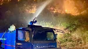 2 bin 310 jandarma personeli orman yangınlarıyla mücadele ediyor - Son  Dakika Haberleri