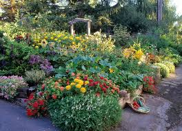 Small Picture 42 best Landscape Design Edible Landscaping Ideas images on