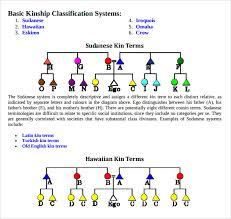 Kinship Chart Maker Kinship Diagram Maker How To Draw Kinship Diagrams The Human
