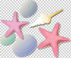 Starfish Chart Starfish Png Clipart Animals Chart Depositfiles Drawing