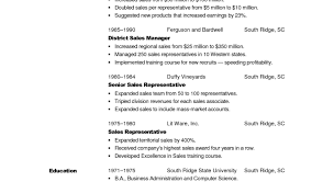 Salesperson Resume Resume Example For Retail