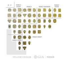 Fancy Color Diamond Chart Fancy Colour Diamonds Fancy Diamond Colour Wheel Ninas
