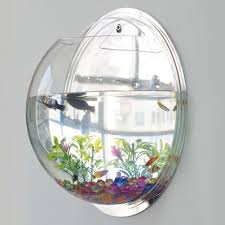 Amazon.com : Wall Hanging Fish Bowl Fish Tank Water Plant Vase Mini Bubble  Aquarium For Home Decoration by Bellagione : Pet Supplies