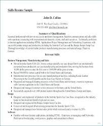 Example Of A Professional Summary On A Resume Professional Summary