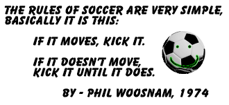 Soccer Quotes To Inspire Motivate Laugh Etc Delectable Soccer Quotes