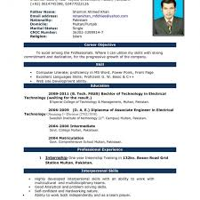 Simple Resume Format Download In Ms Word Professional Template ...