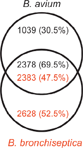 A Complement Venn Diagram Venn Diagram Showing Gene Complements Of B Avium And B