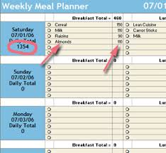 diet spreadsheet starling fitness fitness diet and health weblog weekly meal