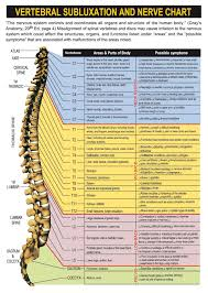 Chiropractic Chart Spinal Nerve Chart With Effects Of Vertebral Subluxations