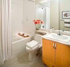 7 chicago Bathroom Remodeling