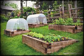 pleasing raised vegetable garden design nz home outdoor decoration in addition to beautiful ideas