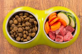 Doggie Food To get Normal, Picky, Fat, Skinny And Diabetic Dogs Recipe