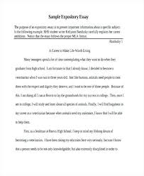 i have a dream essay examples dream job essay examples  i