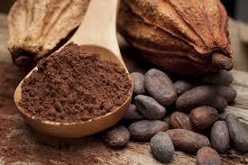 Výsledek obrázku pro kakao