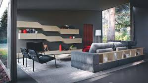 Trendy Living Room Living Room Engrossing Living Room Design Ideas And Photos And