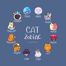 Presenting You A Cat Astrology Chart What Is Your Sign