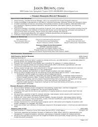 Finance Manager Resume Template Resume For Consultant Application