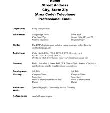 Sample Resume No Experience Beauteous Resume Sample Resume For Computer Science Student Simple Examples
