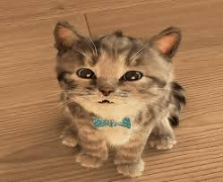cute cats animated gif. Brilliant Animated Gfycat URL With Cute Cats Animated Gif E