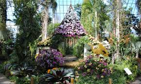 the orchids show 2017 in the new york botanical garden