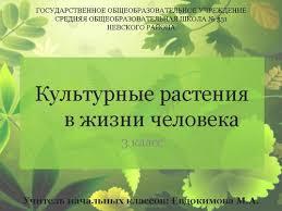 Урок окружающего мира Тема Культурные растения в жизни человека  Презентация к уроку