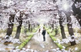 free drama korea on your wedding day