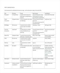 Development Requirements Template Functional Document Requirement