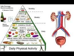 Diet Chart For Diabetic And Kidney Patient Food For Kidney Disease Kidney Function